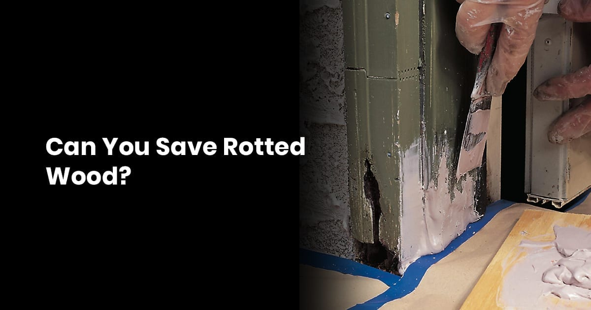 Can You Save Rotted Wood