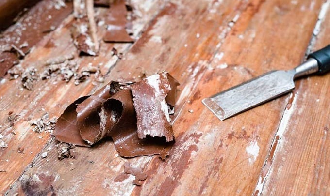 Scraping Paint From Hardwood